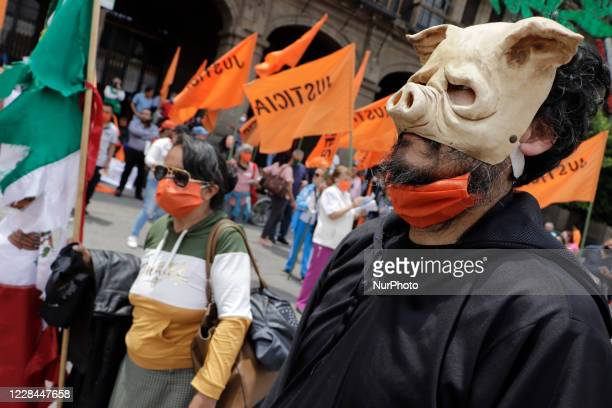Person characterized by corruption who wore a pig mask outside the government offices of Mexico City, to demand attention from people who were...