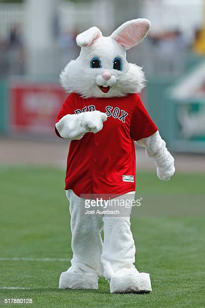 A person dressed as the Easter Bunny walks on the field prior to the spring training game between the Boston Red Sox and the Boston Red Sox at...
