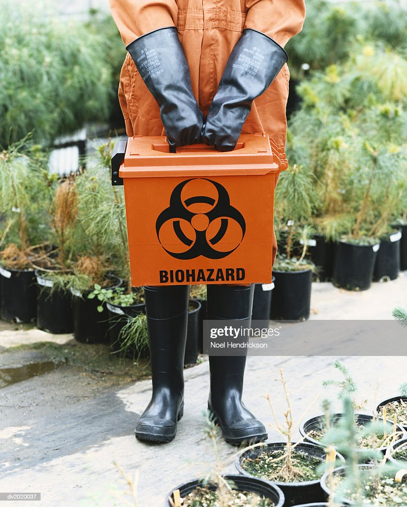 Person Dressed in Protective Clothing Holding a Hazardous Box in a Greenhouse : Stock Photo