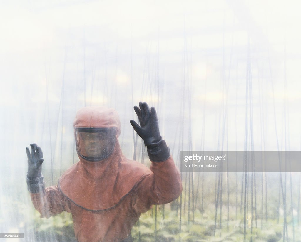 Person Dressed in Protective Clothing Standing in a Greenhouse : Stock Photo