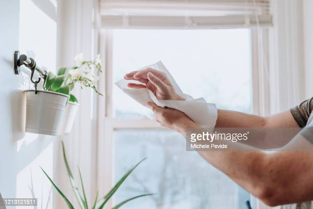 person drying hands with paper towels to prevent disease dissemination, covid-19 - drying stock pictures, royalty-free photos & images