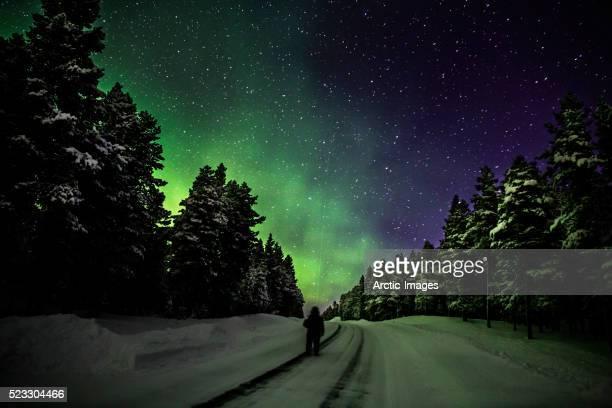 Person enjoying the Aurora Borealis, Lapland, Sweden