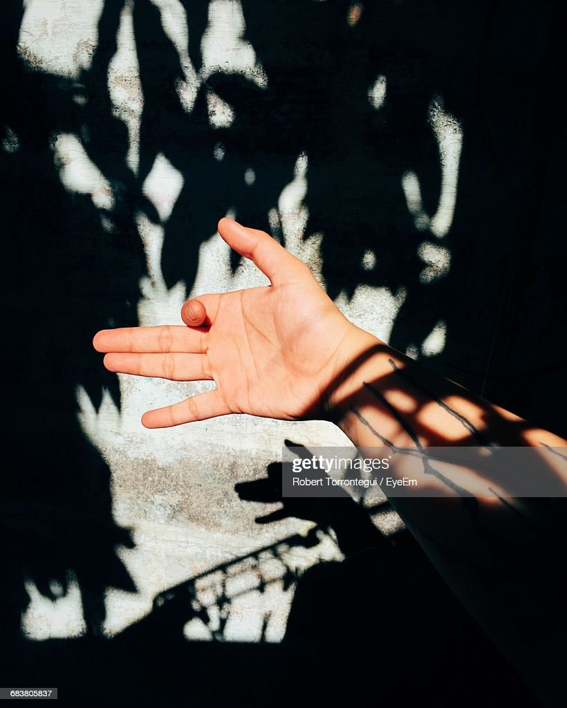 Person Gesturing Hand Shadow Puppet : Stock Photo