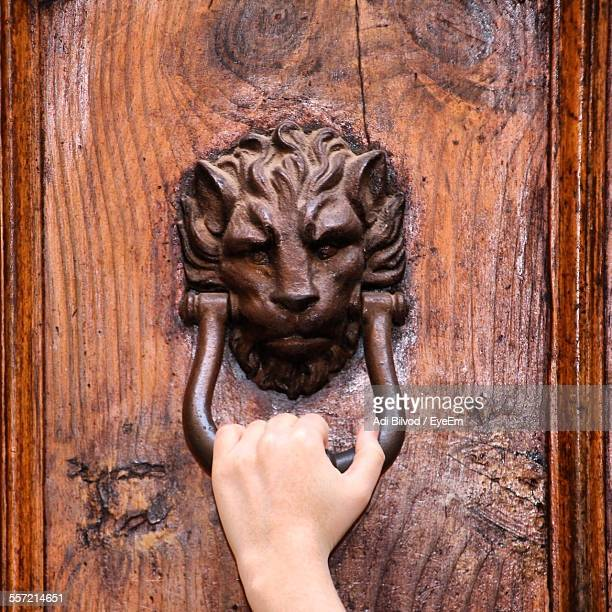 person hand holding lion head door knocker on wooden door - door knocker stock photos and pictures