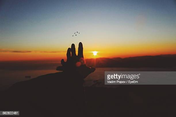 Person Hand Reaching To Sun