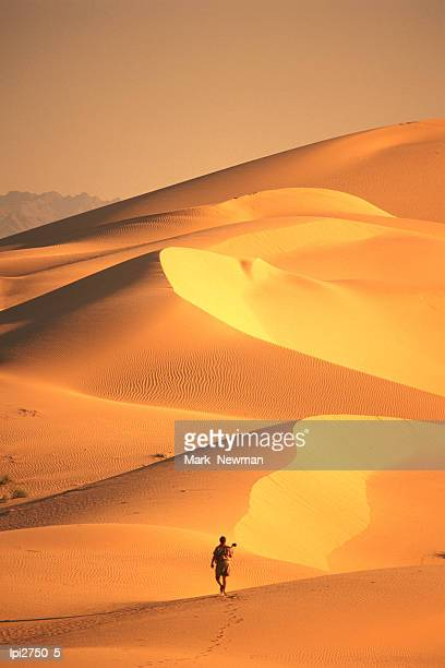 person hiking across algodones dunes, imperial sand dunes state recreation area, united states of america - leisure activity stock pictures, royalty-free photos & images