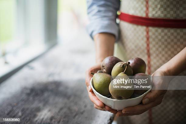 A person holding a bowl of organic fruits, pears.