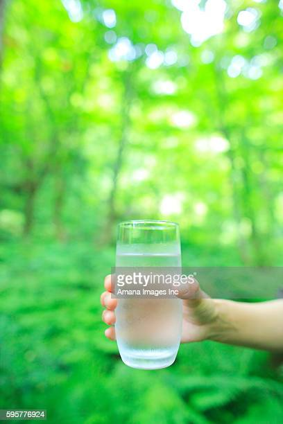 Person holding glass of water in forest