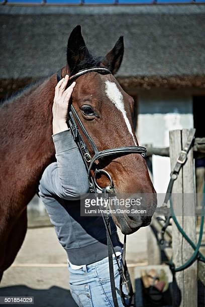 Person Holding Horse's Head, Close-up, Baranja, Croatia, Europe