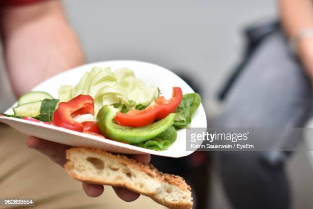 person holding paper plate with raw vegetable - paper plate stock photos and pictures