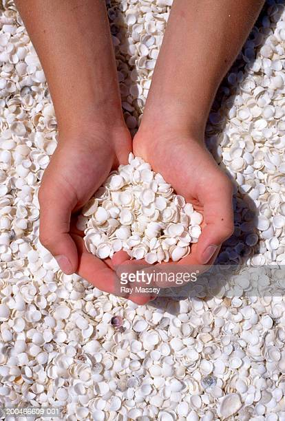 Person holding shells, close-up