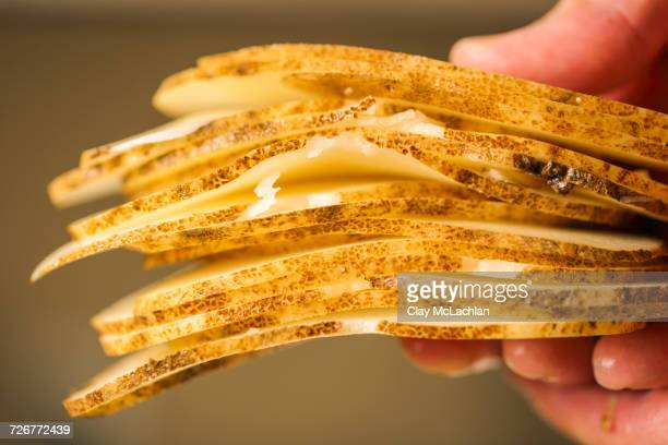 Person Holding Stack Of Uncooked Potato Chips
