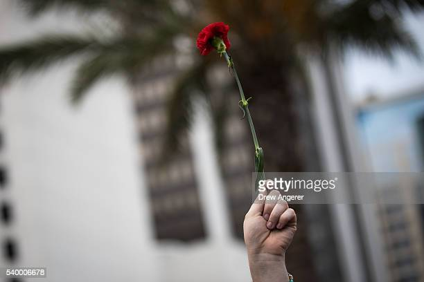 A person holds a flower during an evening memorial service for the victims of the Pulse Nightclub shootings at the Dr Phillips Center for the...