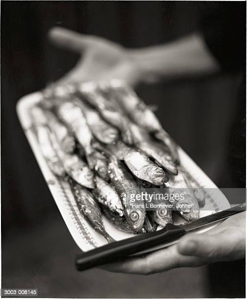 Person Holds Tray of Herrings