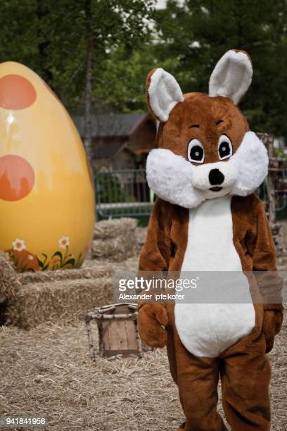 person in brown bunny costume with gigantic yellow egg in background - easter bunny costume stock pictures, royalty-free photos & images