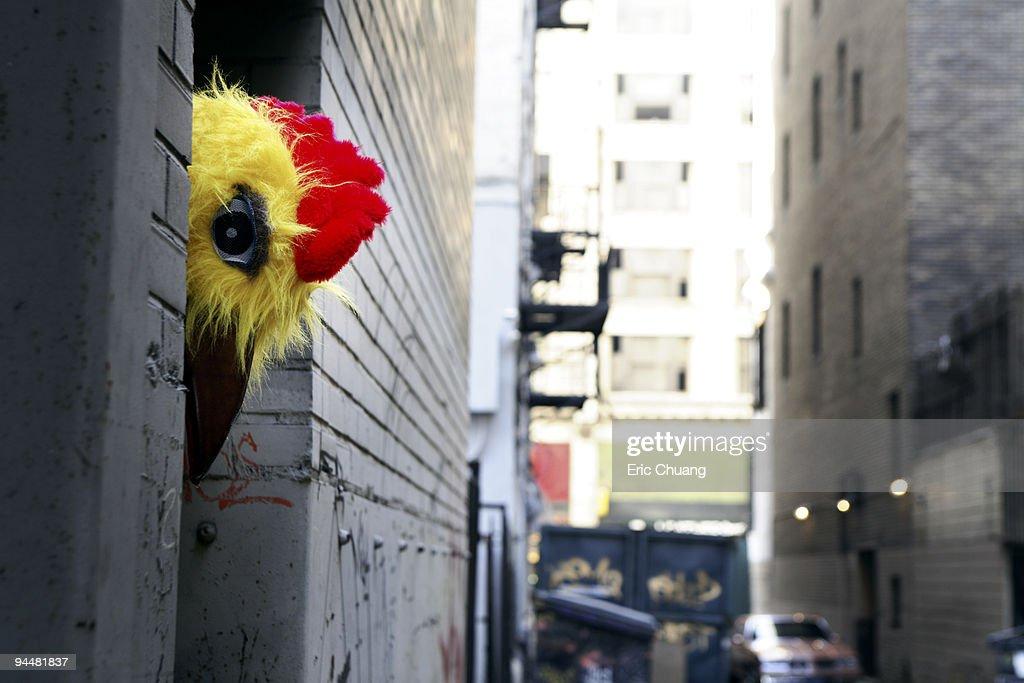 Person in chicken costume peeking around corner : Stock Photo
