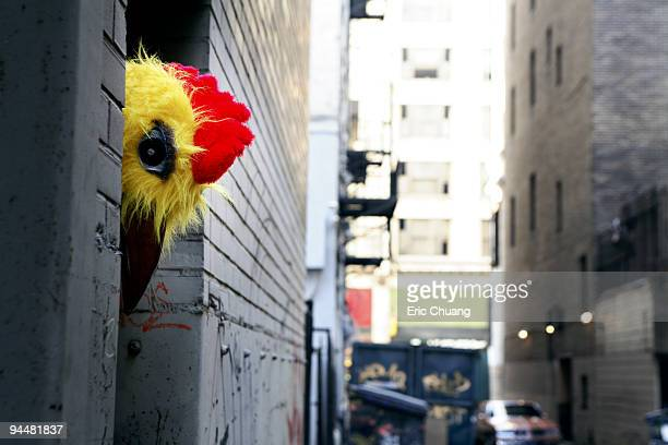 Person in chicken costume peeking around corner