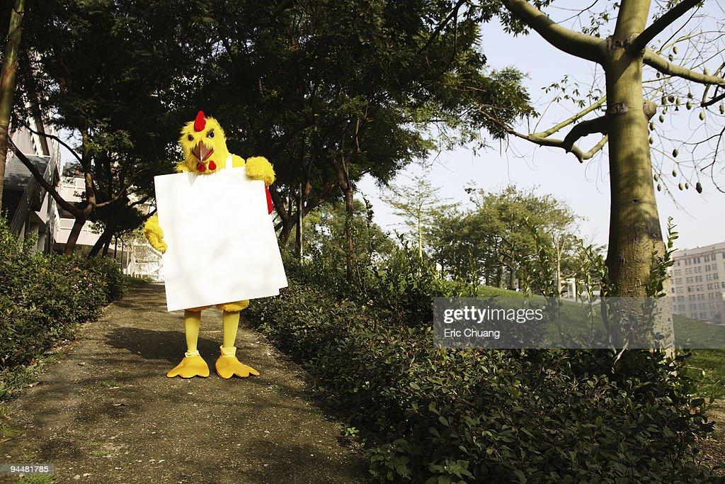 Person in chicken costume wearing signboard in forest : Stock Photo