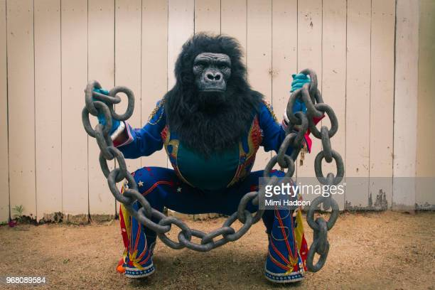 Person in Gorilla Mask and American Costume Holding Large Broken Chain
