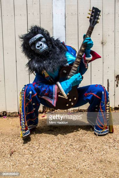 person in gorilla mask and american costume playing electric guitar - mensaap stockfoto's en -beelden