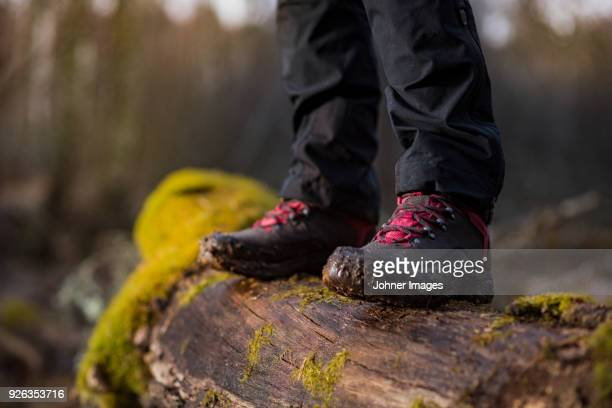 person in hiking boots standing on log - dirty feet stock pictures, royalty-free photos & images