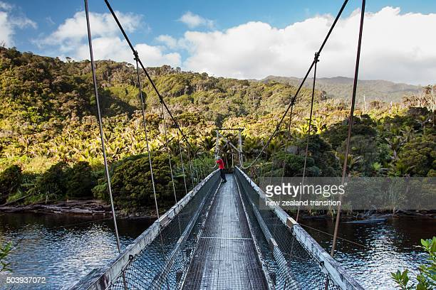 person in red on the bridge over kohaihai river, kahurangi national park, new zealand - kahurangi national park bildbanksfoton och bilder