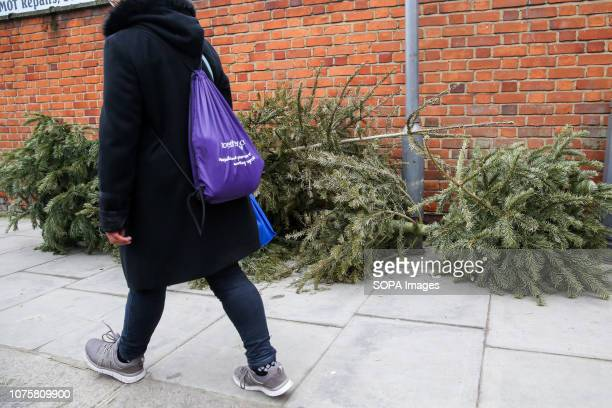 Person is seen walking past Christmas trees that are dumped on the pavement in North London just four days after Christmas day.