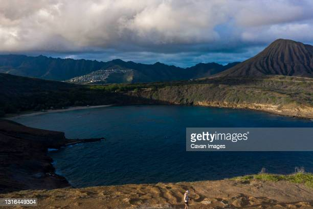 person looking at a spectacular view of tropical oahu - hawaii inselgruppe stock-fotos und bilder