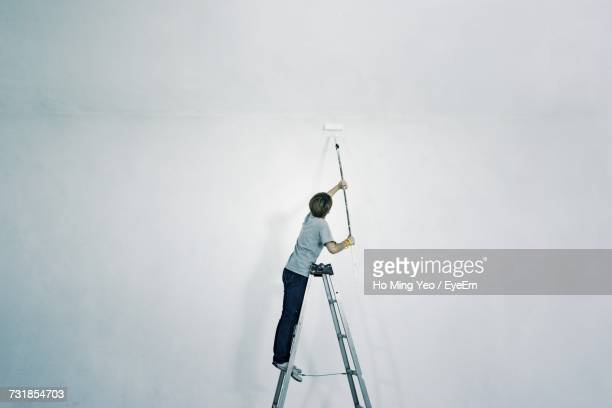 Person Painting Wall On Ladder