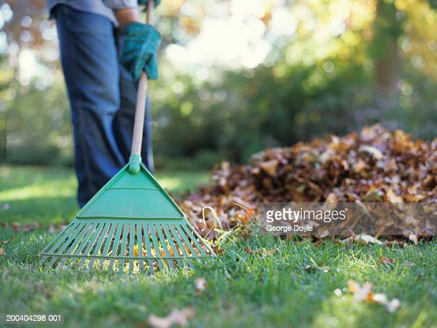 person raking leaves in garden, low section - rake stock pictures, royalty-free photos & images