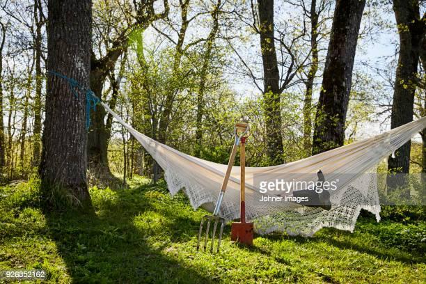 person resting in hammock - jardinier humour photos et images de collection