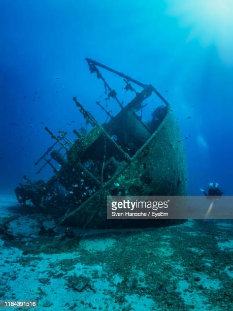 person scuba diving by abandoned shipwreck undersea - ship wreck stock pictures, royalty-free photos & images