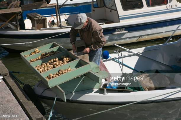person selling patatoe on his boat at helsinki finland