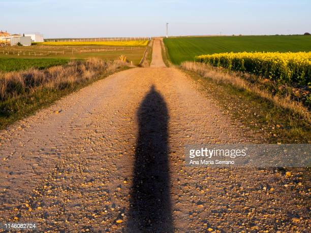 person shadow person on a path - shadow puppeteer stock photos and pictures