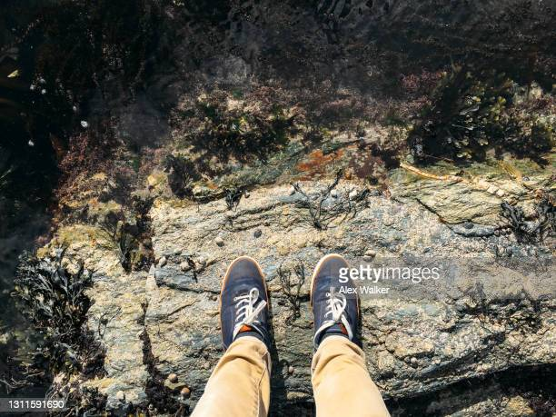 person standing on rocks in blue shoes and khaki trousers - beige shoe stock pictures, royalty-free photos & images