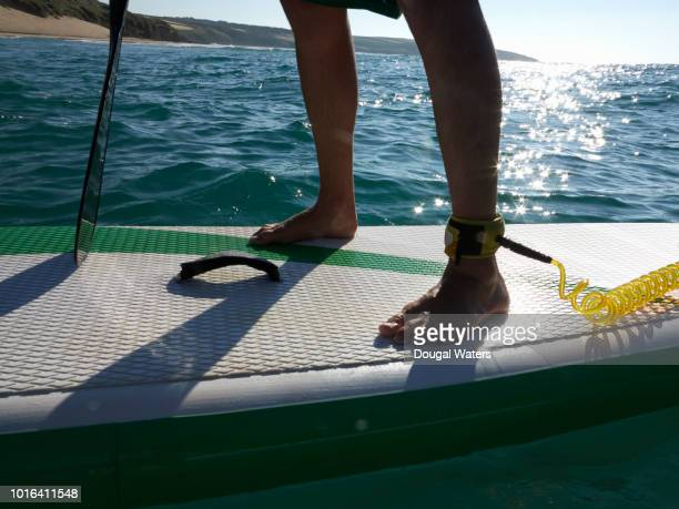 person standing on sup paddle board at sea close up. - dougal waters stock pictures, royalty-free photos & images