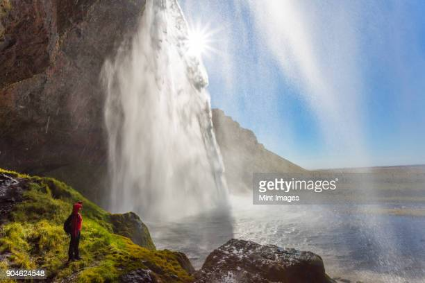 person standing on the edge of rock near a waterfall cascade over a sheer cliff.