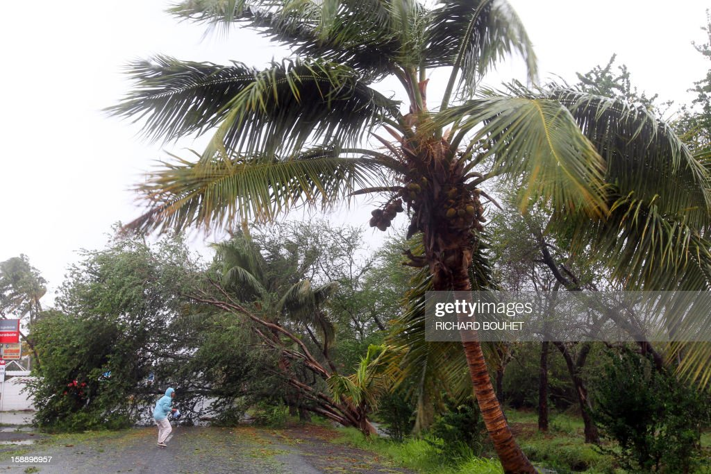 A person stands on a road blocked by torn off trees on January 3, 2013 in Saint-Paul, western part of French overseas' island of La Reunion, as cyclone Dumile approaches and authorities declare today a red alert that forbid people to leave their homes.