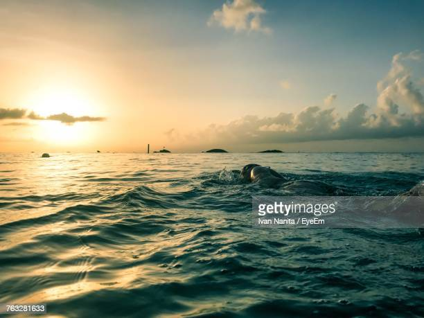 Person Swimming In Sea During Sunset