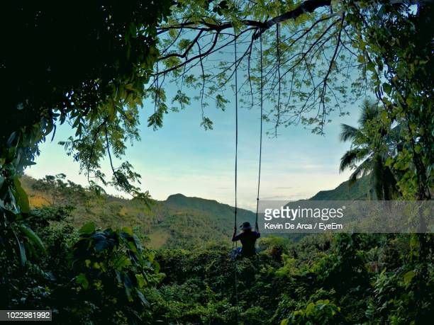 person swinging over trees against sky - cebu stock photos and pictures