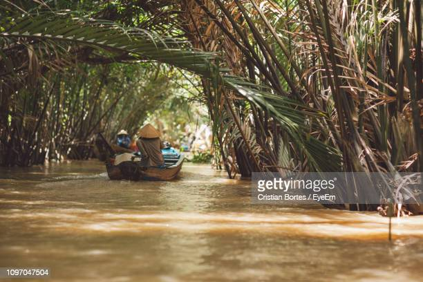 person traveling in boat on river amidst palm trees - bortes - fotografias e filmes do acervo