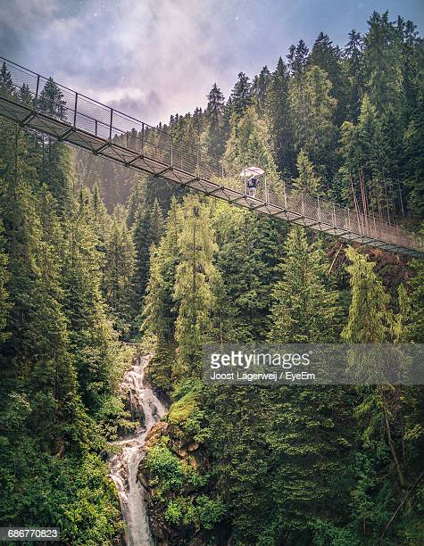 Person Trekking Footbridge In Mountain Scenery