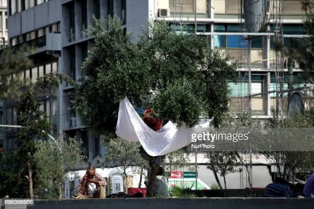 A person under the shadow of a tree in Omonoia square in Athens city center Greece June 15 2017
