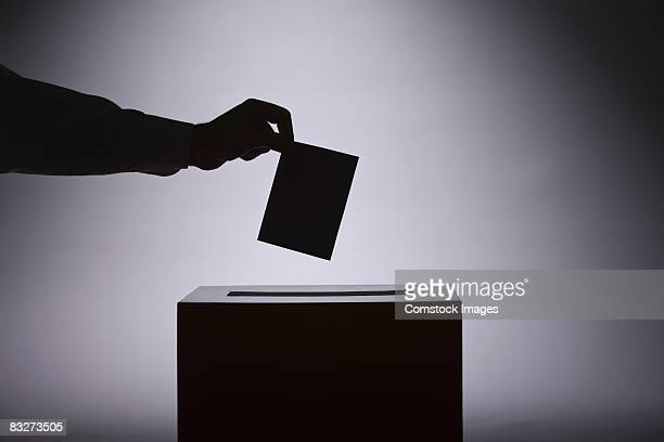 person voting - election stock pictures, royalty-free photos & images