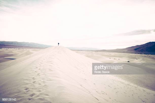 a person walking alone on a remote sand dune - robb reece stock photos and pictures
