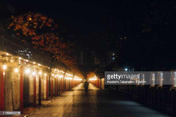 Person Walking Amidst Illuminated Houses At Night