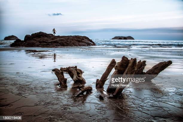 a person walking on a distant rocky beach in costa rica - robb reece 個照片及圖片檔