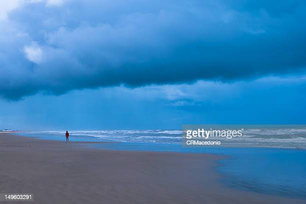 person walking on beach - crmacedonio stock photos and pictures