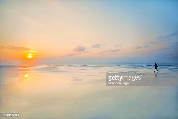 person walking on the beach at sunrise - 朝日 ストックフォトと画像