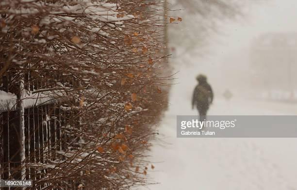 Person walking on the sidewalk